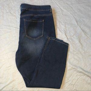 Love & Legend Cropped Stretchy Skinny Jean